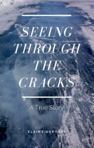 seeing through the cracks elaine uskoski