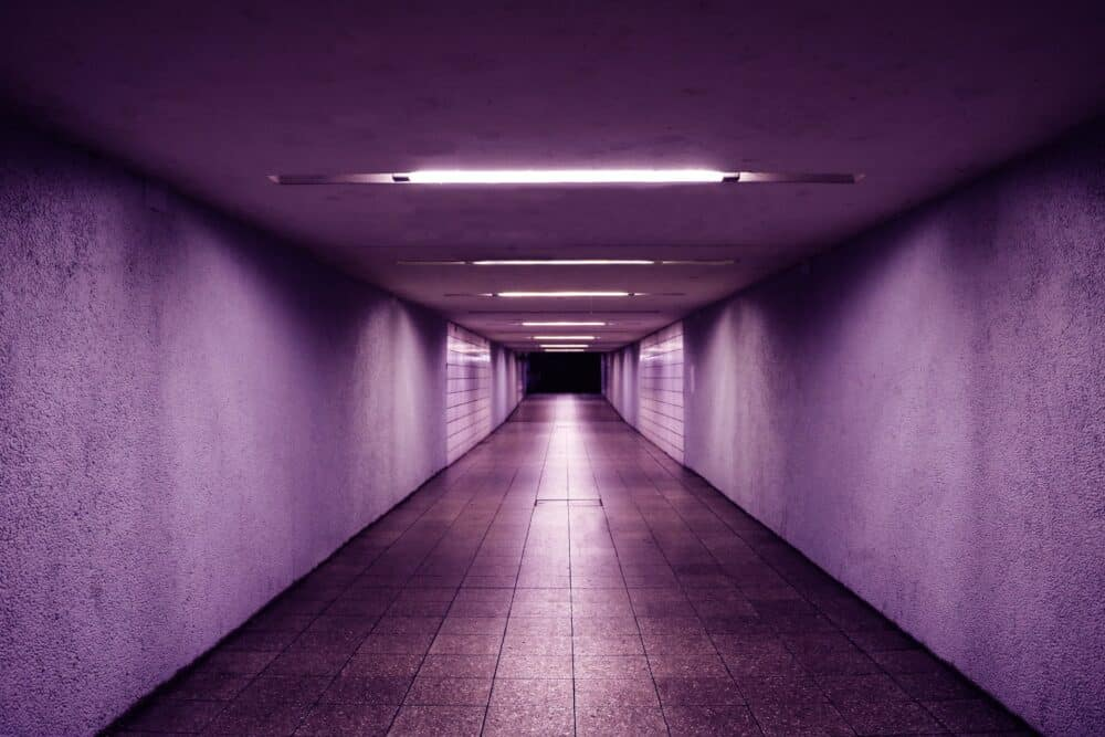 purple hallway